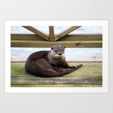 River Otter  Art Print