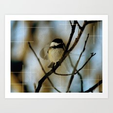 Black Capped Chickadee in motion with speckles Art Print