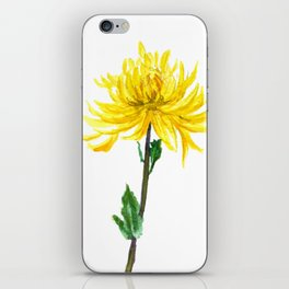 one yellow chrysanthemum iPhone Skin