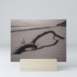 BEACH DRIFTWOOD CROW POINT DEVON MONOCHROME Mini Art Print