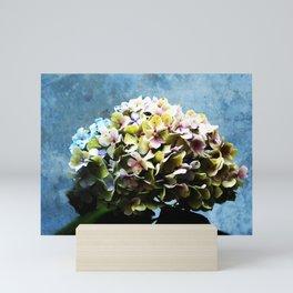 Shabby-chic Hydrangea Flower Mini Art Print