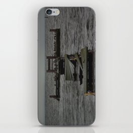 Jetty of Birds  iPhone Skin