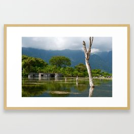 Tropical decay Framed Art Print