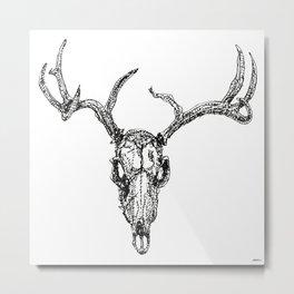 D is for Deerskull Metal Print