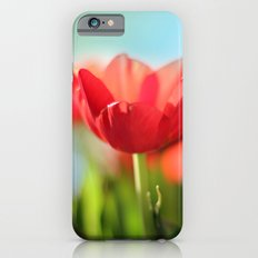 RED TULIPS IN THE SUN iPhone 6s Slim Case