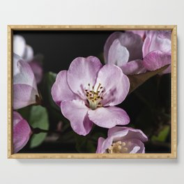 Pink Pastel apple blossoms Serving Tray