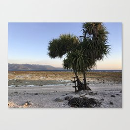 Low Tide at Gili Trawangan Island | Travel photography Indonesia | Adventure in Asia Canvas Print