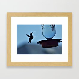 Ironcross Hummingbird Framed Art Print