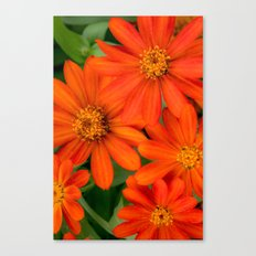 Look at You Smiling at Me Canvas Print