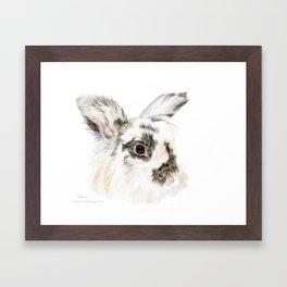 Pixie the Lionhead Rabbit by Teresa Thompson Framed Art Print