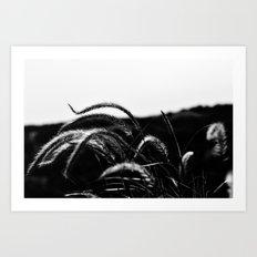 Wind Whispers Art Print