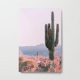 desert dawn Metal Print