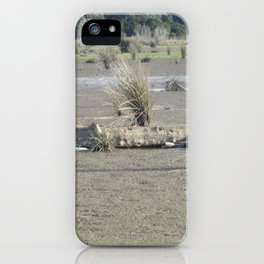 Log in dry marsh iPhone Case
