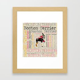Adorable Boston Terrier Framed Art Print