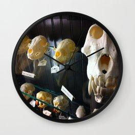 baboon bones Wall Clock