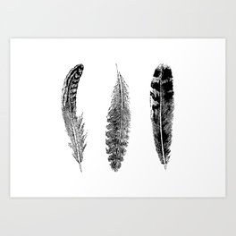 Feather Trio | Three Feathers | Bird Feathers | Black and White | Art Print