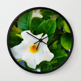 White Brazilian Jasmine Wall Clock