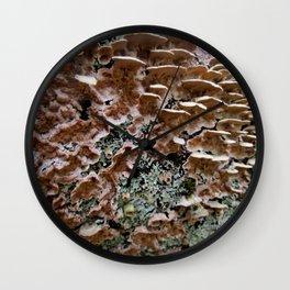 Fungi on a Fallen Tree Wall Clock