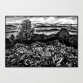 Carolina Rhododendron Canvas Print