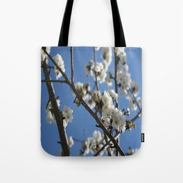 Cherry Blossom Branches Against Blue Sky Tote Bag