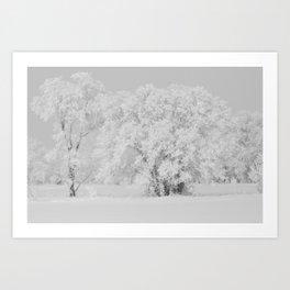 First Frost, North Dakota, 2010. Art Print