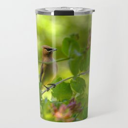 Cedarwaxwing in honeysuckle Travel Mug