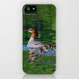 Merganser Duck Family iPhone Case