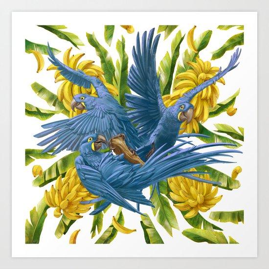 Hyacinth macaws and bananas Stravaganza. Art Print