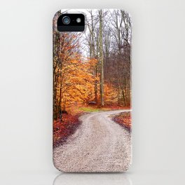 Ivy Point iPhone Case
