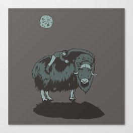 Muskox by moonlight Canvas Print