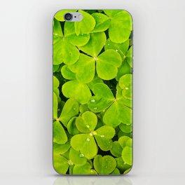 raindrops on clovers iPhone Skin