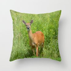 Deer on Edge of Field Throw Pillow