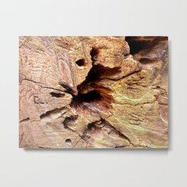Wooden veins, Muir Woods, CA Metal Print