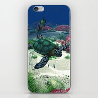 sea turtle iPhone & iPod Skins featuring Sea Turtle by Simone Gatterwe
