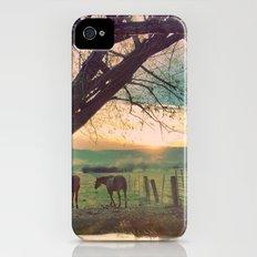 horses iPhone (4, 4s) Slim Case