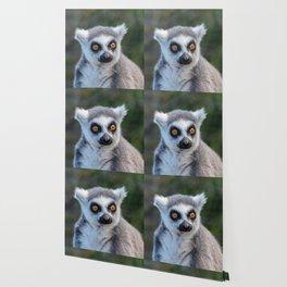 Ring Tailed Lemur Wallpaper