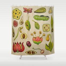 botany Shower Curtain