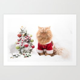 Angry Christmas Cat in Snow Art Print