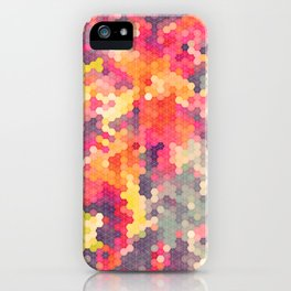Summer Garden 4 iPhone Case