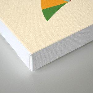 Rainbow Fox Canvas Print