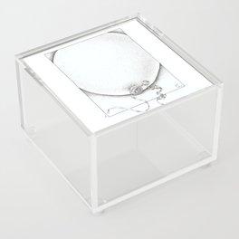 Swollen Balloon Acrylic Box