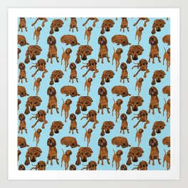 Redbone Coonhound on Blue Art Print