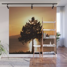 Summer Sunset Tree  Wall Mural