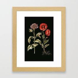 Carnation & Poppy on Charcoal Framed Art Print