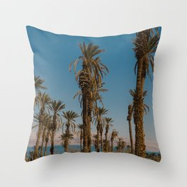 Palm trees in the Negev Desert, Israel Throw Pillow