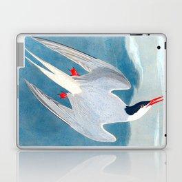 Arctic Tern Bird Laptop & iPad Skin
