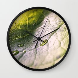 Water Drops On Rose Leaf Wall Clock