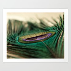 Funky Feather Art Print