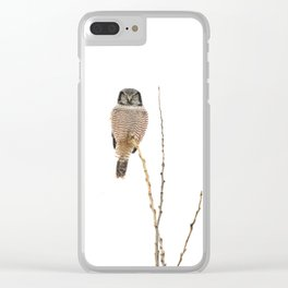 Balanced Clear iPhone Case