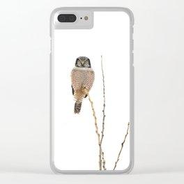 Balanced Clear iPhone Case